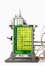 photobioreactor module